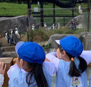 動物園に行ってきたよー!🐅🐘🦒